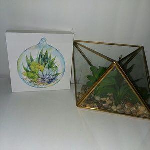 Small square succulent decor & Succlents